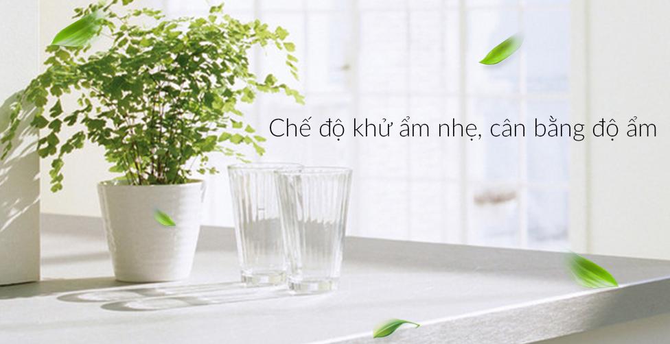 Chế độ khử ẩm nhẹ giúp căn phòng luôn thoáng sạch và cân bằng độ ẩm